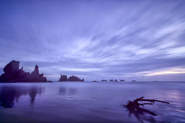 Purple Print featuring the photograph Violet Vista by Jon Glaser