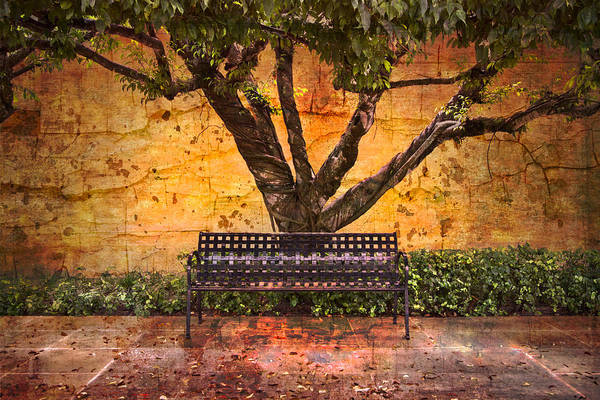 Delray Art Print featuring the photograph Waiting For You by Debra and Dave Vanderlaan