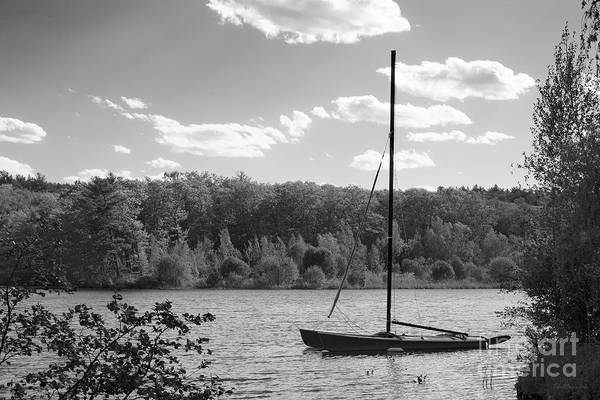 Lake Waban Art Print featuring the photograph Wellesley College Waban Lake by University Icons