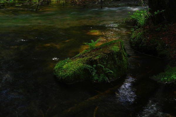 Water Art Print featuring the photograph Where The Water Is As Slow As Tranquility by Jeff Swan