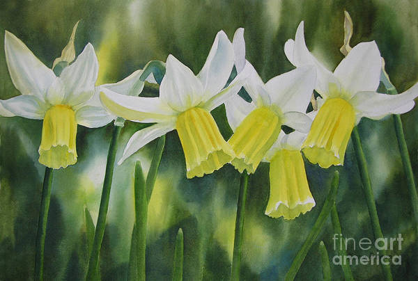 White Art Print featuring the painting White And Yellow Daffodils by Sharon Freeman
