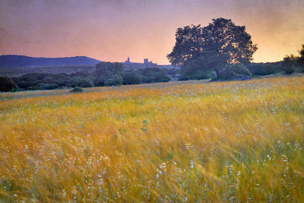 Arquitecture Art Print featuring the photograph Windy Sunset At The Medieval Castle by Guido Montanes Castillo