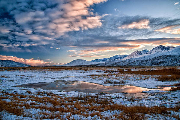 Sky Art Print featuring the photograph Winter Afternoon by Cat Connor