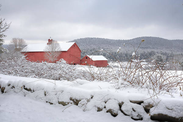 Old Red Barn Art Print featuring the photograph Winter In Connecticut by Bill Wakeley