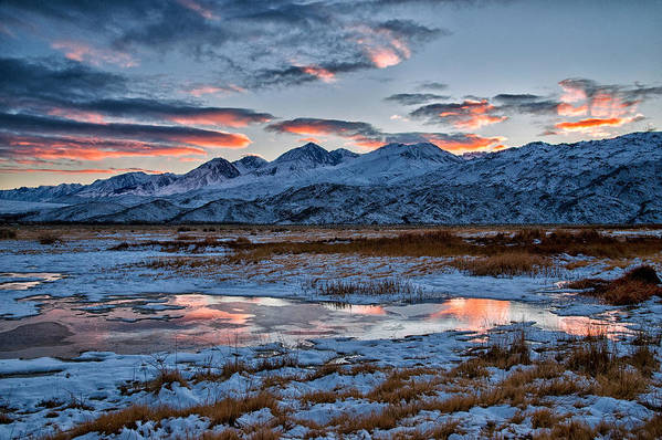 Clouds Art Print featuring the photograph Winter Sunset Reflection by Cat Connor