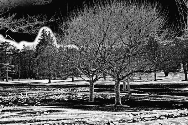 Winter Art Print featuring the photograph Without You by Madeline Ellis