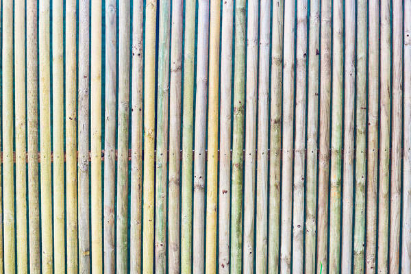 Background Print featuring the photograph Wooden Poles by Tom Gowanlock