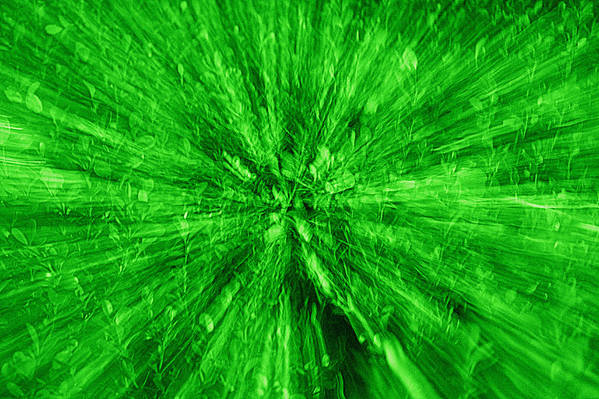 Green Art Print featuring the photograph Zoom In Green by Paul Wilford