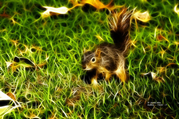 Digital Art Art Print featuring the digital art - Fractal - Pointer - Robbie The Squirrel by James Ahn