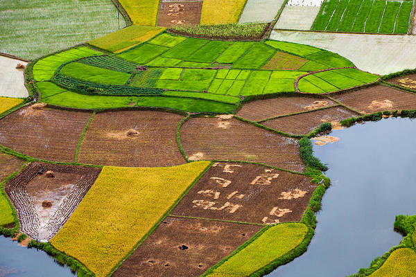 Horizontal Art Print featuring the photograph Bac Son Rice Field by Hoang Giang Hai
