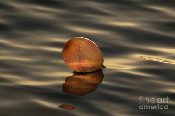 Nature Art Print featuring the photograph Balloons On The Water by Odon Czintos