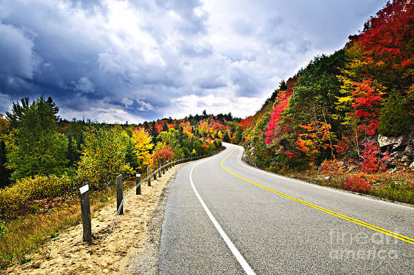 Road Art Print featuring the photograph Fall Highway by Elena Elisseeva