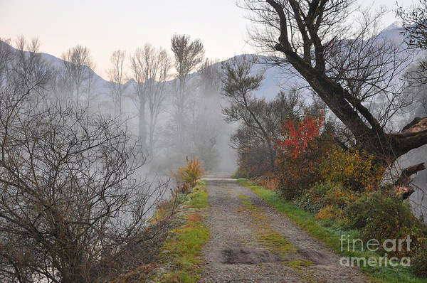 Road Art Print featuring the photograph Foggy Road by Mats Silvan