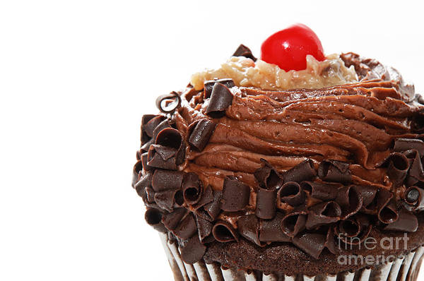 Andee Design German Chocolate Art Print featuring the photograph German Chocolate Cupcake 2 by Andee Design
