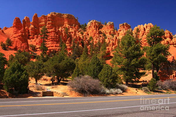 Landscape Art Print featuring the photograph Red Canyon by Angela Q