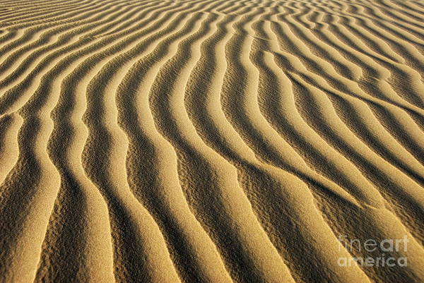 Huacachina Art Print featuring the photograph Sand Dunes by Tomaz Kunst