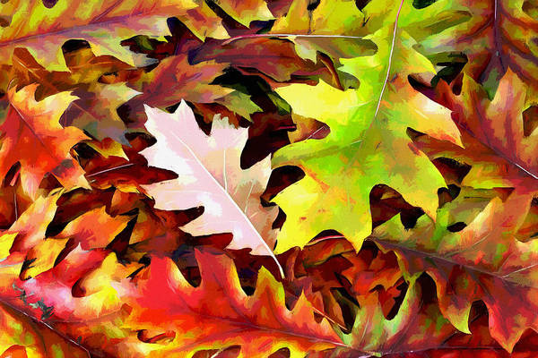Autumn Art Print featuring the photograph Simple Background From Autumn Leaves by Aleksandr Volkov