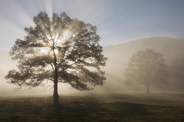 Great Smoky Mountains Art Print featuring the photograph Sunrise In Cades Cove by Larry Lynch