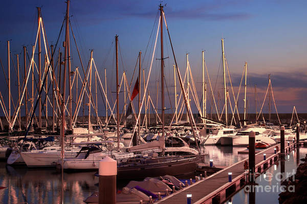 Anchor Art Print featuring the photograph Yacht Marina by Carlos Caetano