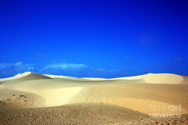 Dunes Art Print featuring the photograph Desert by MotHaiBaPhoto Prints