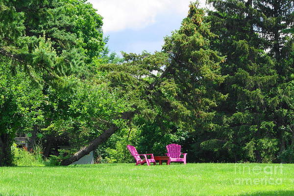 Day Art Print featuring the photograph Back Yard Seating by Damian Brewka