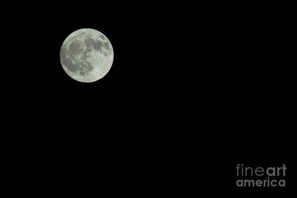Nature Art Print featuring the photograph Moon by Odon Czintos