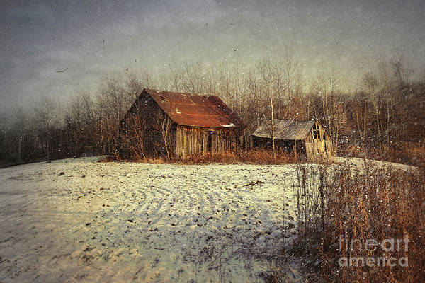 Abandon Art Print featuring the photograph Abandoned Barn With Snow Falling by Sandra Cunningham