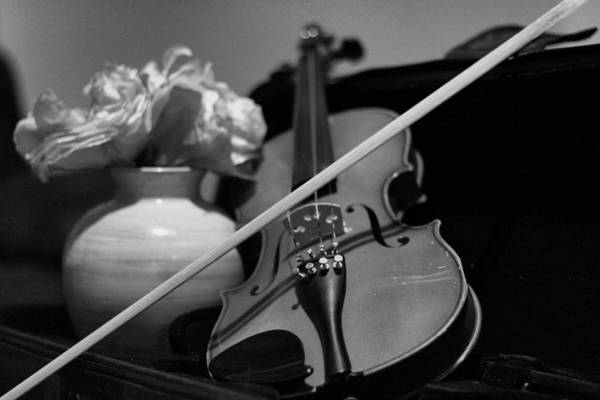 Violin Art Print featuring the photograph 3 Strings #2 by Ernest Giles