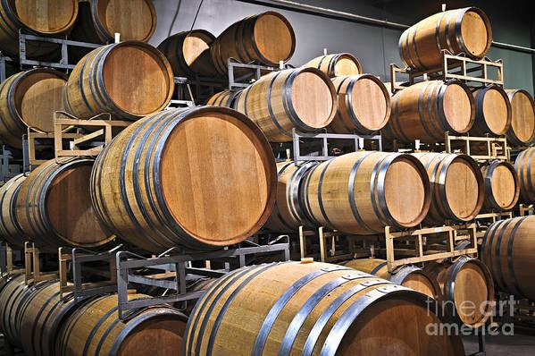 Barrels Art Print featuring the photograph Wine Barrels by Elena Elisseeva