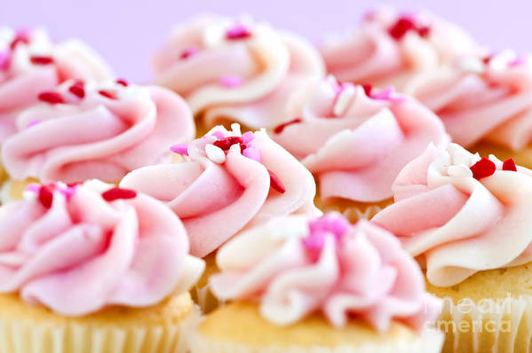 Cupcakes Art Print featuring the photograph Cupcakes by Elena Elisseeva