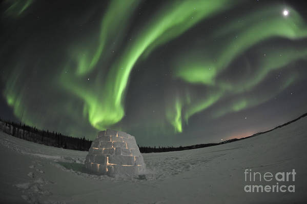 Yellowknife Art Print featuring the photograph Aurora Borealis Over An Igloo On Walsh by Jiri Hermann