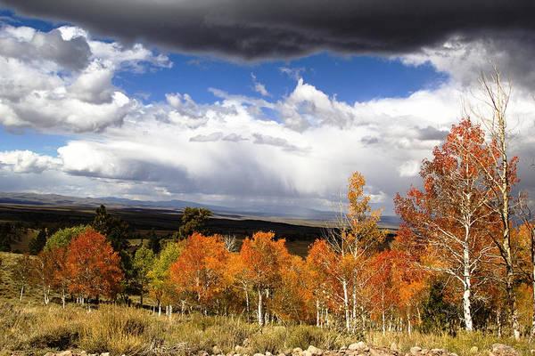 Autumn Photographs Art Print featuring the photograph Rocky Mountain Fall by Mark Smith