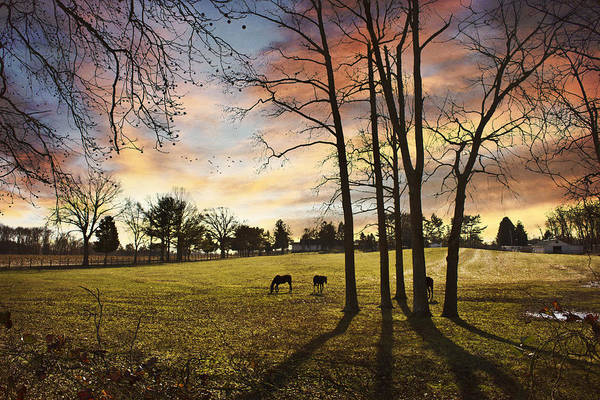 Morning Art Print featuring the photograph A New Day Begins by John Rivera