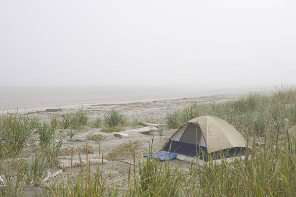 Queen Charlotte Islands Art Print featuring the photograph A Tent Sits In The Dunes By The Beach by Taylor S. Kennedy