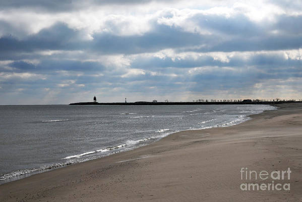 Beach Art Print featuring the photograph Along The Shore by Dan Holm