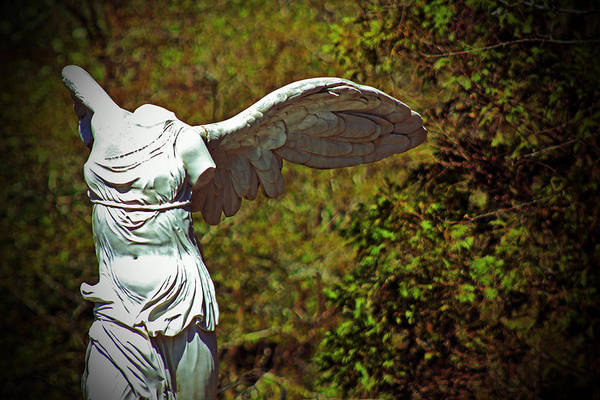 Statue Print featuring the photograph Ancient Flight by Nichole Leighton