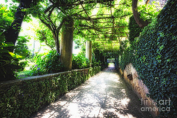 Unesco World Heriatge Site Art Print featuring the photograph Arbor Path In Ravello by George Oze