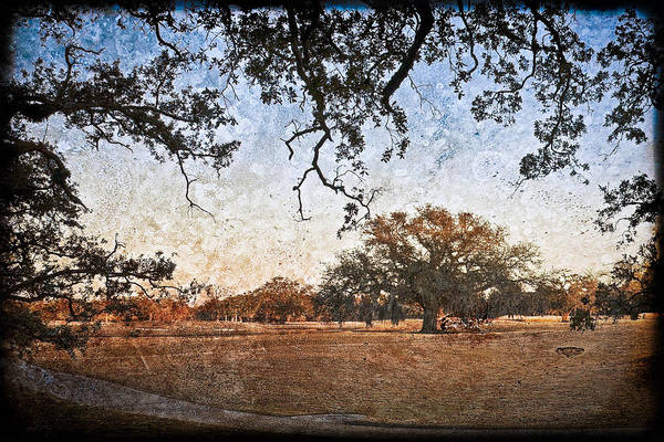 Texture Art Print featuring the photograph Audubon Golf Course by Ray Devlin