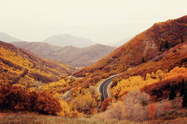 Horizontal Art Print featuring the photograph Autumn Colored Trees Along Mountain Road by Www.julia-wade.com