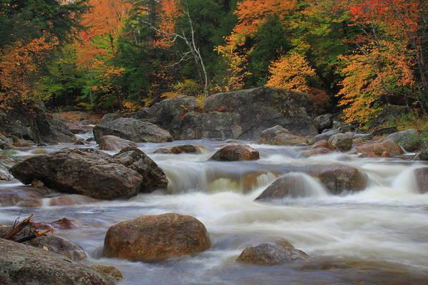 Vermont Art Print featuring the photograph Autumn In Vermont by Matthew Winn