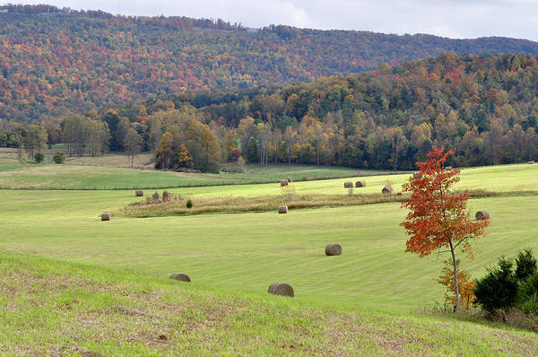 Landscapes Print featuring the photograph Autumn Valley Hay Bales by Jan Amiss Photography
