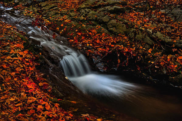 Nature Art Print featuring the photograph Autumn Waterfall by Irinel Cirlanaru