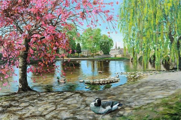 Duck; Blossom; Scenic; Peak District; Lake; Ducks; Animals; Blossom Tree; Tree; Trees; Houses; Bridge; Bakewell Bridge; Derbyshire; Water; Stones Art Print featuring the painting Bakewell Bridge - Derbyshire by Trevor Neal