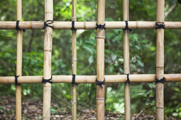 No People Art Print featuring the photograph Bamboo Fence Detail Meiji Jingu Shrine by Bryan Mullennix