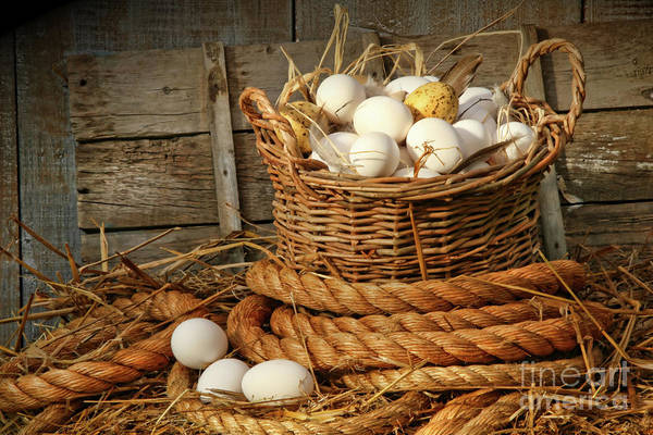 Agriculture Art Print featuring the photograph Basket Of Eggs On Straw by Sandra Cunningham