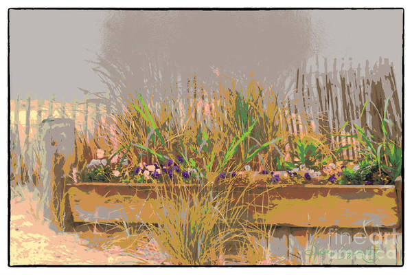 Susan Lipschutz Art Print featuring the digital art Beach Surprise by Susan Lipschutz
