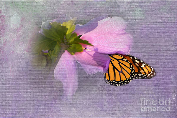 Monarch Butterfly Art Print featuring the photograph Beautiful In Pink by Betty LaRue