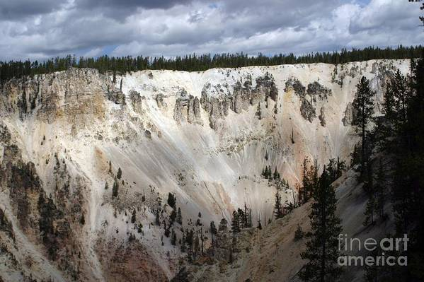 Grand Canyon Art Print featuring the photograph Beautiful Lighting On The Grand Canyon In Yellowstone by Living Color Photography Lorraine Lynch