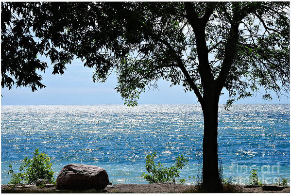 Lake Art Print featuring the photograph Beautiful Morning On The Lake by Elaine Manley