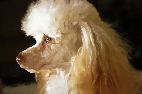 Dogs Art Print featuring the digital art Bella by Mickey Clausen